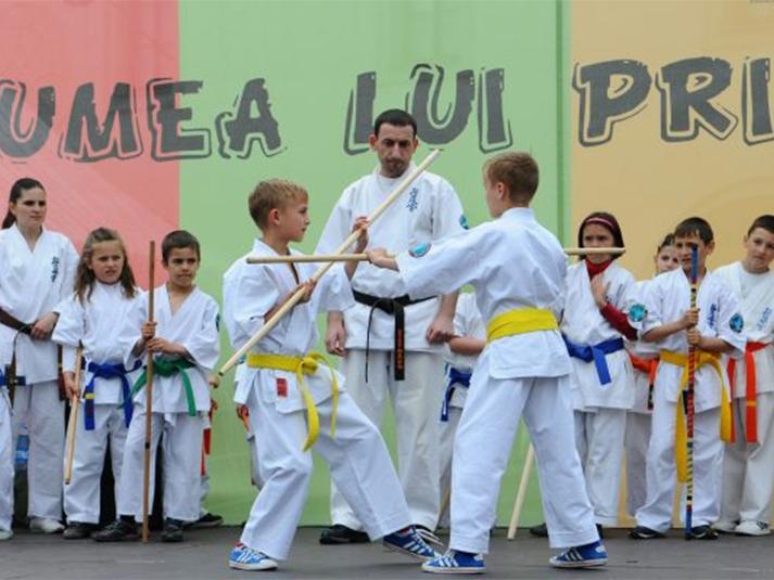 karate_713x535
